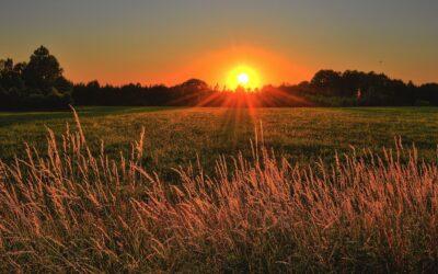 Et masterstudium om regenerering av landlige områder ved bruk av kultur- og naturarv