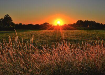 Professional Master's Programme: heritage for rural regeneration
